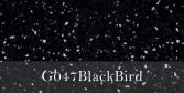 G047BlackBird
