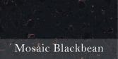 Mosaic_Blackbean